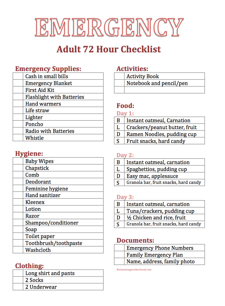 Essential DIY Adult 72 Hour Kit with Printable Checklists