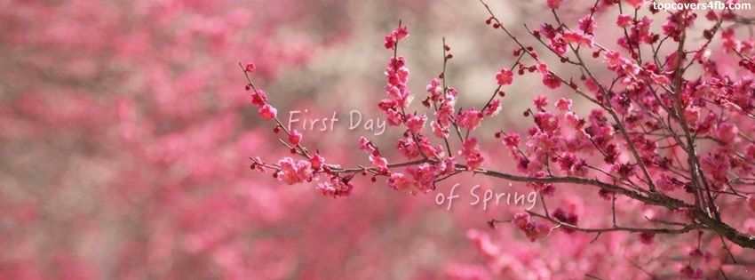 First Day Of Spring Cover Photo For Facebook Profile Page Cover Pics For Facebook Facebook Cover Photos Facebook Cover