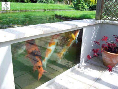Koi Pond Window Frames and Glass   Atlantica Gardens
