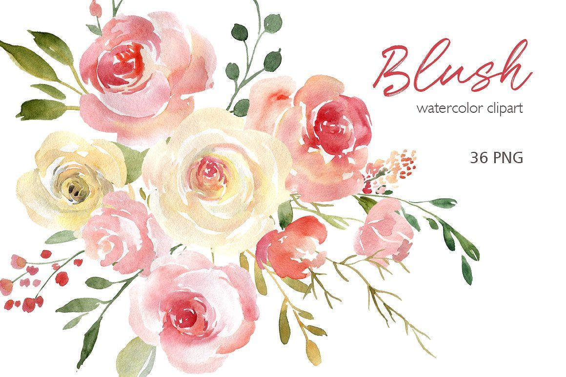 Blush Watercolor Flowers Roses Peony Floral Watercolor Watercolor Flowers Flower Drawing