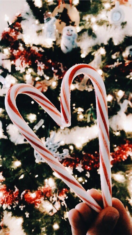 Tree - Bucket List Ideas #christmasbackgrounds