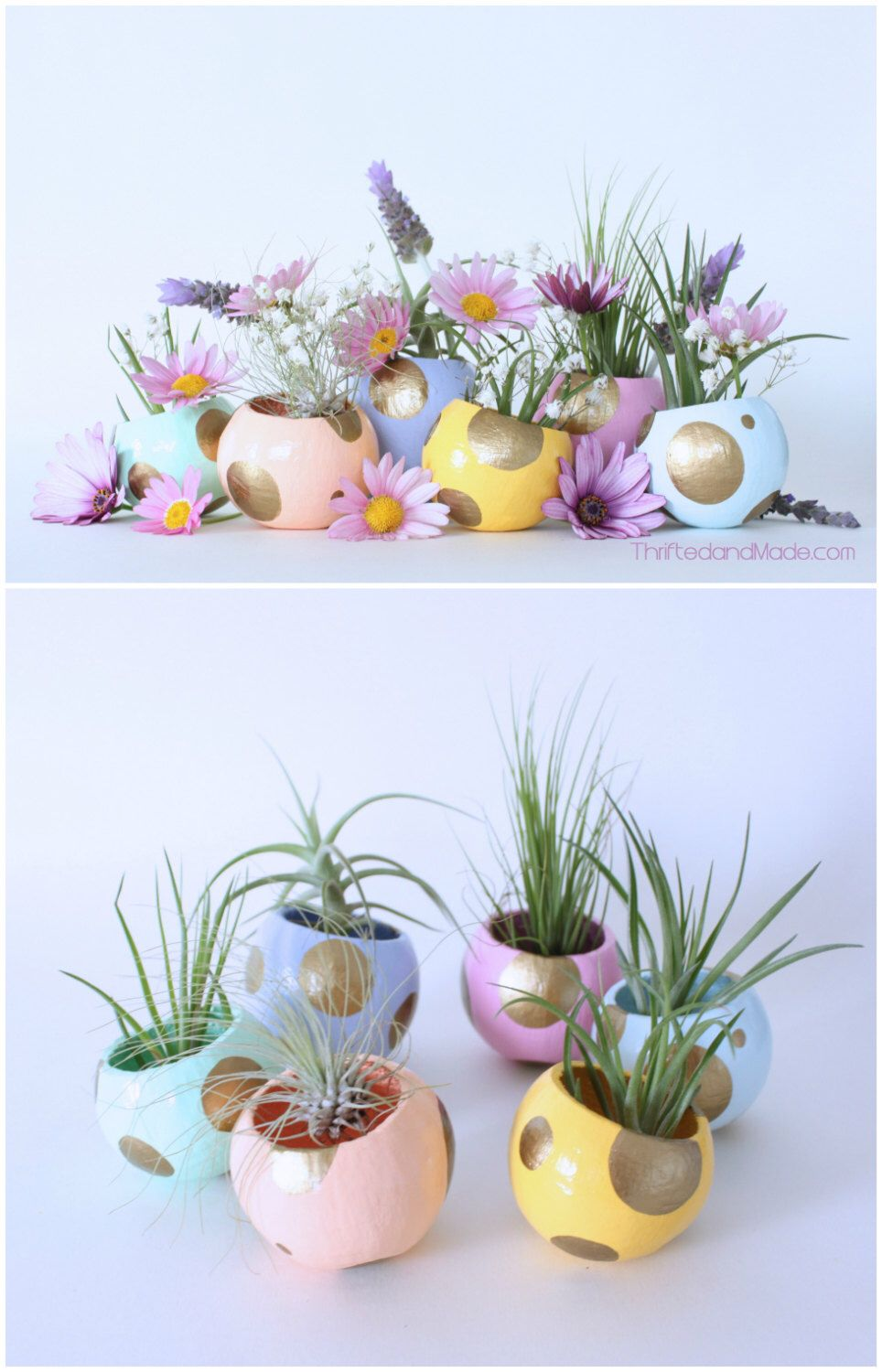 Mini air plant planter with air plant easter table setting easter mini air plant planter with air plant easter table setting easter basket spring decor hostess gift pink purple peach gold mint negle Choice Image