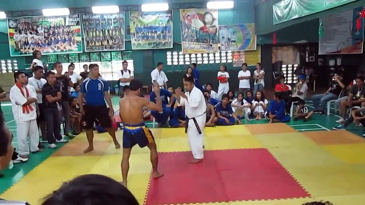 Karate vs Muay Thai: which style is more effective in a ...