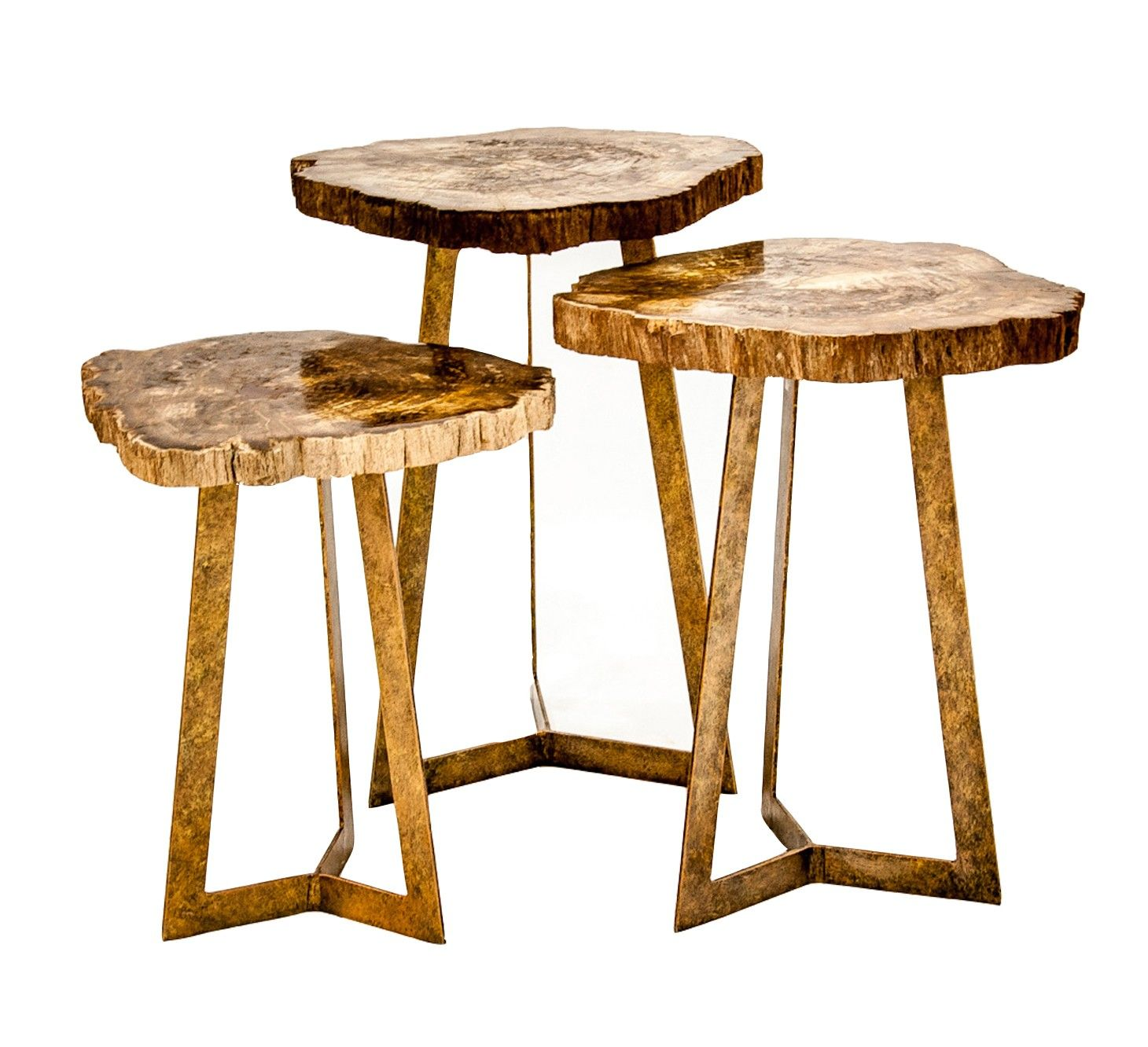 KAHOY SIDE TABLE brass petrified wood From $315 for the