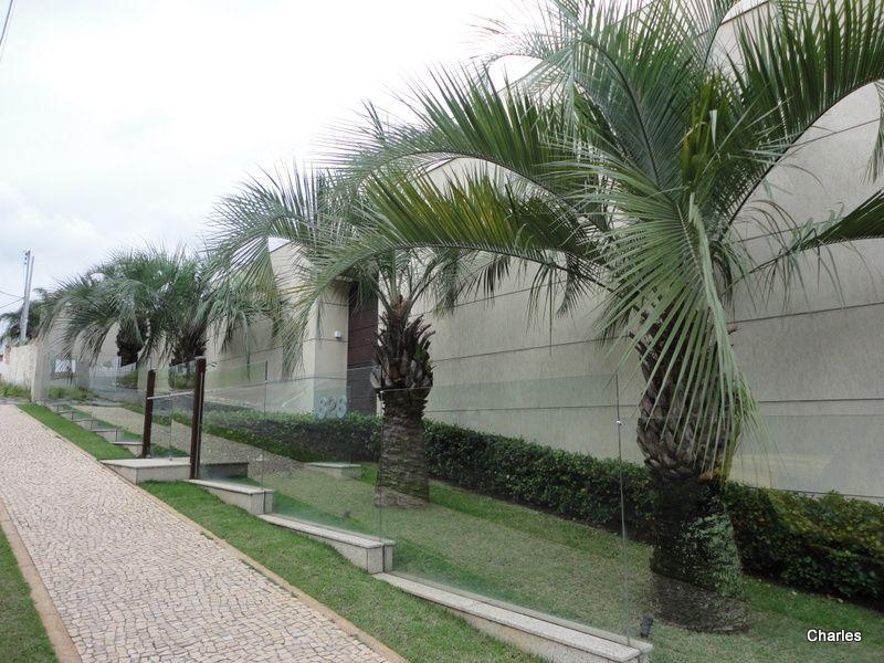 15 muros modernos para casas - Plantas trepadoras para muros ...