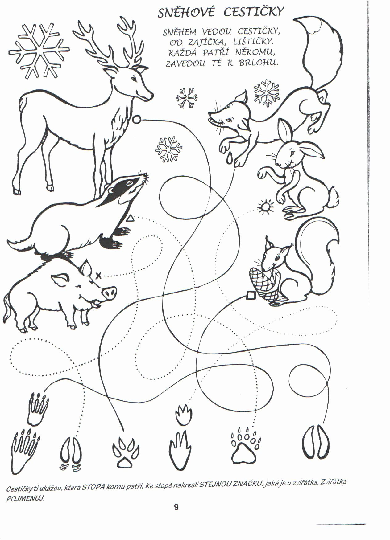 Kid Coloring Pages Animals In With Images