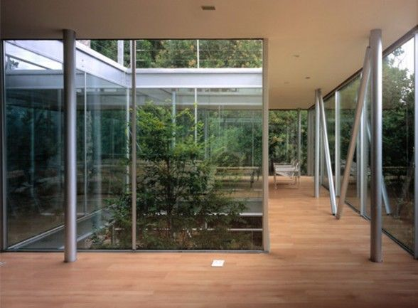 Minimalist Design with Tree Inside The House by Undurraga Deves