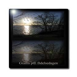 "Across the lake, Grattis p? f?delsedagen, Happy Birthday in Swedish - 12 Inch Ceramic Tile by Beverly Turner Photography. $22.99. Dimensions: 12"" H x 12"" W x 1/4"" D. Construction grade. Floor installation not recommended.. High gloss finish. Clean with mild detergent. Image applied to the top surface. Across the lake, Grattis p? f?delsedagen, Happy Birthday in Swedish Tile is great for a backsplash, countertop or as an accent. This commercial quality construction g..."