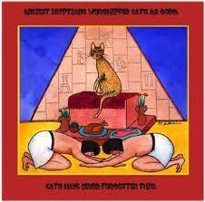 Resultado de imagem para cats egypt