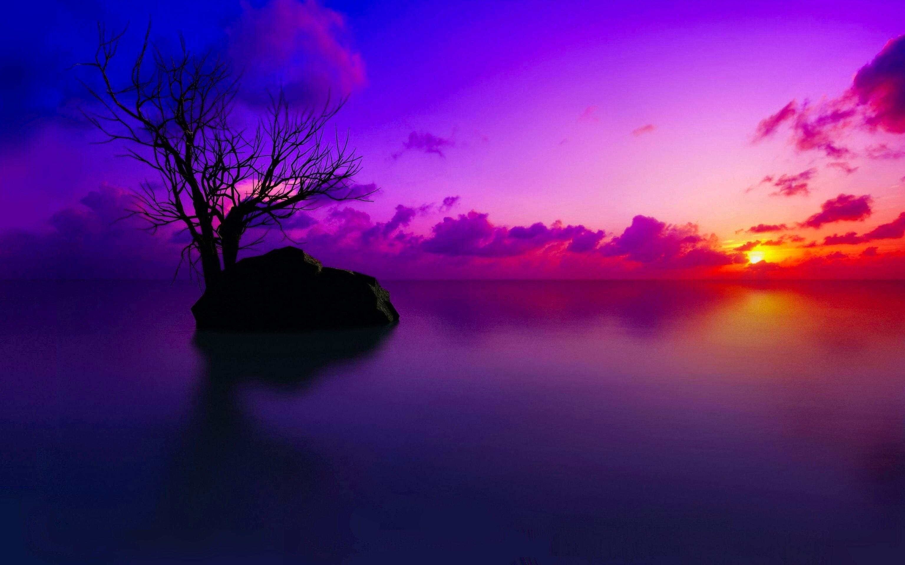 Reddish Violet Sunset Shadows Sunset Wallpaper Purple Sunset Sunset