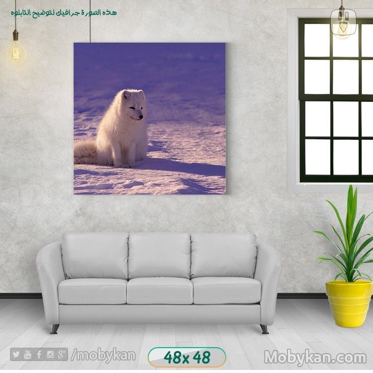 White Wolf In The Desert White Wolf Desert Decor Wolf