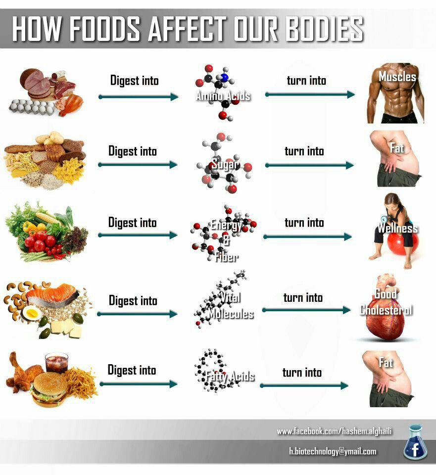 Guide to food.