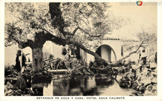 Estanque de agua y casa hotel agua caliente historia de for Estanque para agua caliente