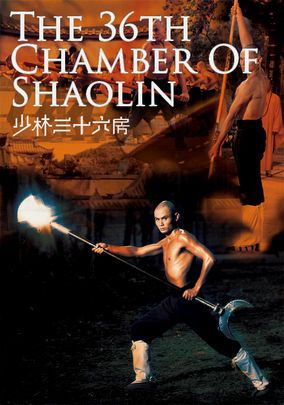 More New Arrivals At Netflix Instant Shaolin Rent Movies