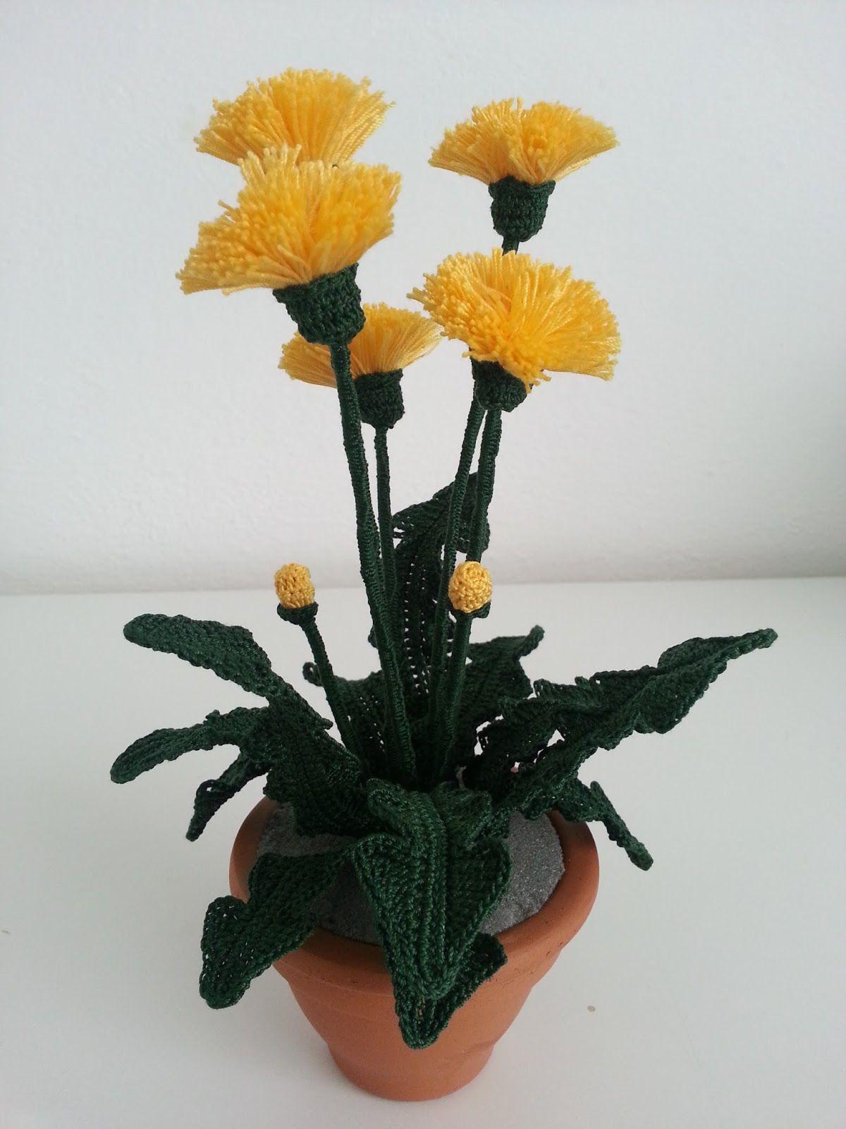 E una pianta diffusa praticamente ovunque tanto che viene considerata infestante. Ma è anche una pianta magica dalle mille virtù, utili...