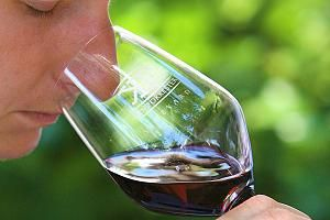 Durch Riechen oder Schmecken erkennt man schnell, ob ein Wein fehlerhaft ist.