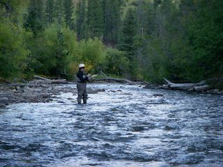 Fly Fishing On The Pecos River In New Mexico Pecos River Fly Fishing River Fishing