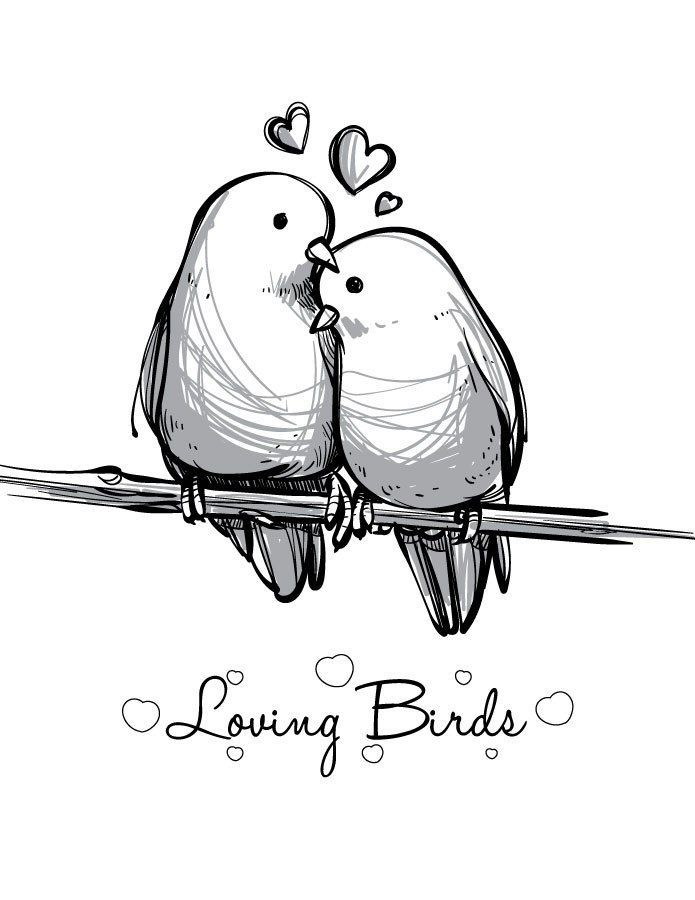 Coloriage St Valentin Love Bird Imprimer Carte Bird Drawings Love Birds Drawing Valentine Drawing