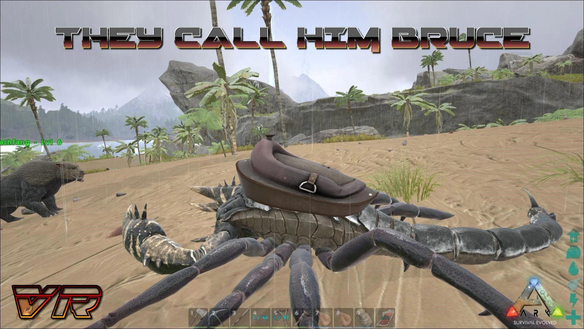40+ Scorpian ark ideas