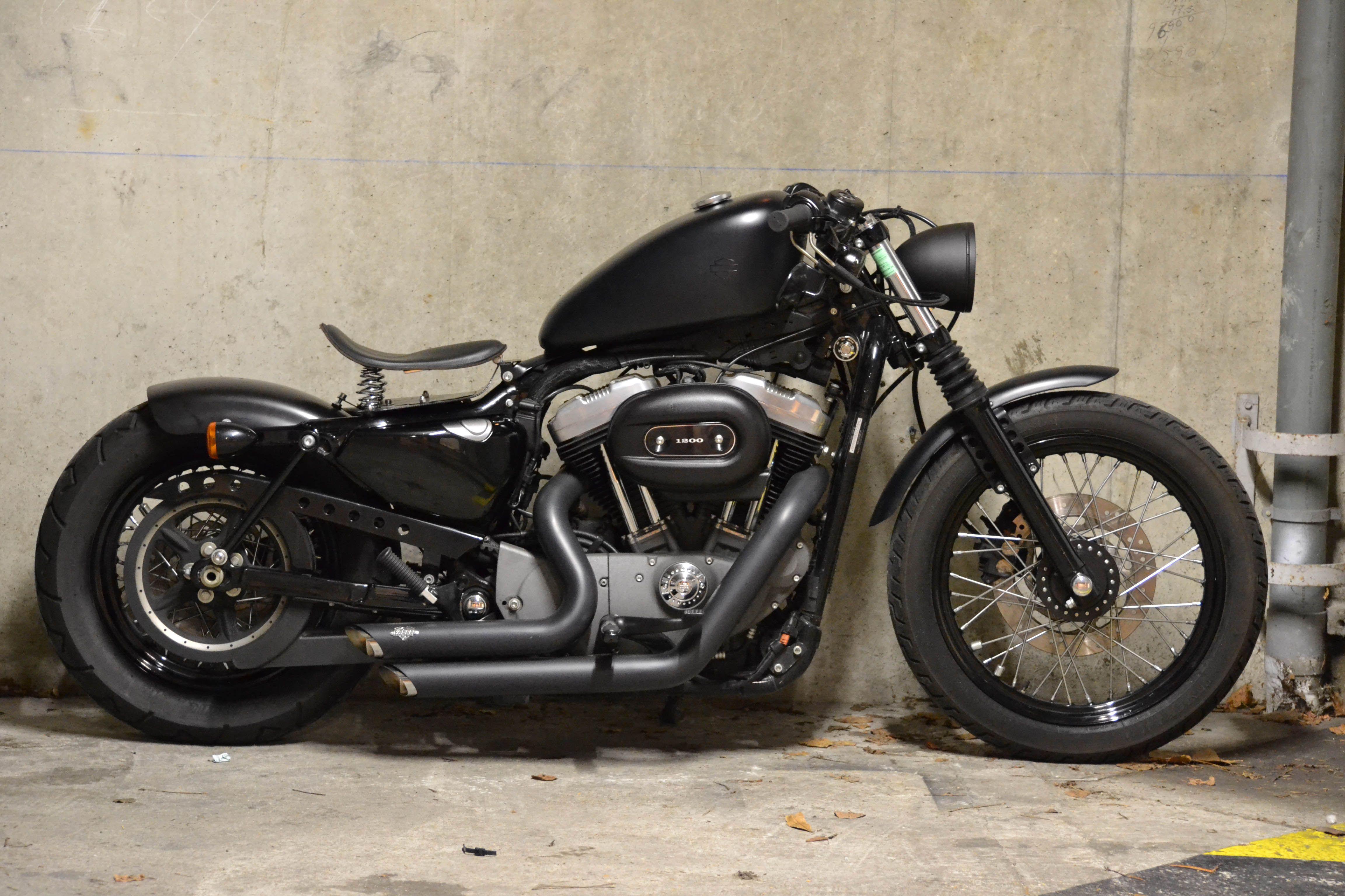 Harley Davidson Nightster | HOT RODS HOT WHEELS HOT LADIES ...