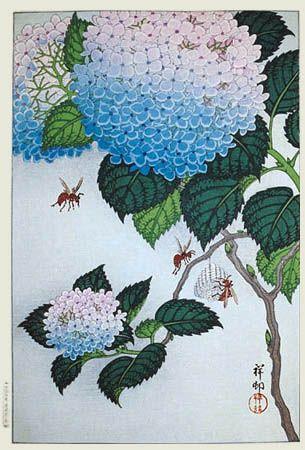 Koson, 1929. Hydrangeas and Wasps, Japan