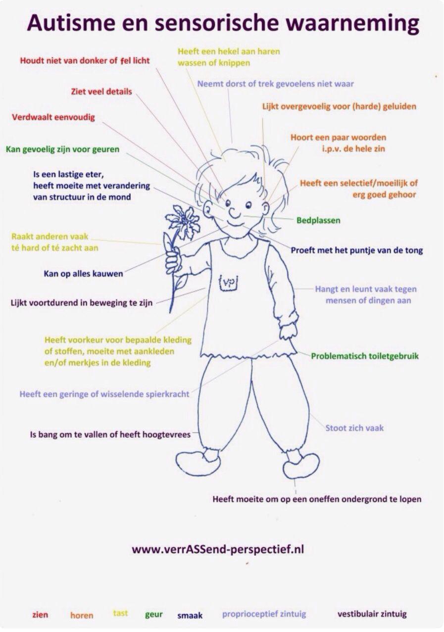Autisme en sensorische waarneming.