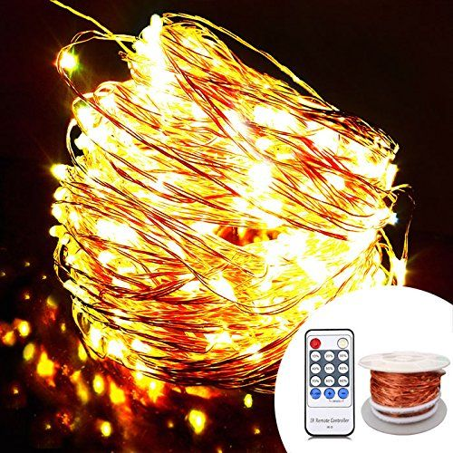 OrgMemory Copper LED String Lights, (80 Ft, 240 Leds, War