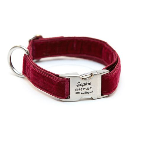 Rita Bean Engraved Buckle Personalized Dog Collar - Velvet (Burgundy) | PupLife Dog Supplies