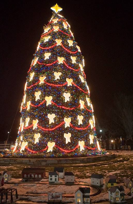 giant christmas tree decorated with glowing bows and lights