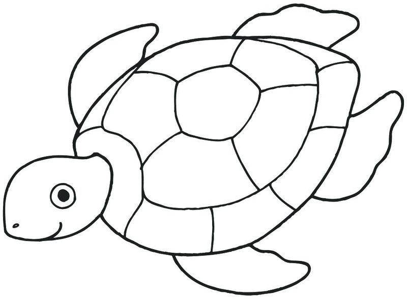 Wonderful Ocean Coloring Pages Ideas Free Coloring Sheets Turtle Coloring Pages Ocean Coloring Pages Sea Turtle Drawing