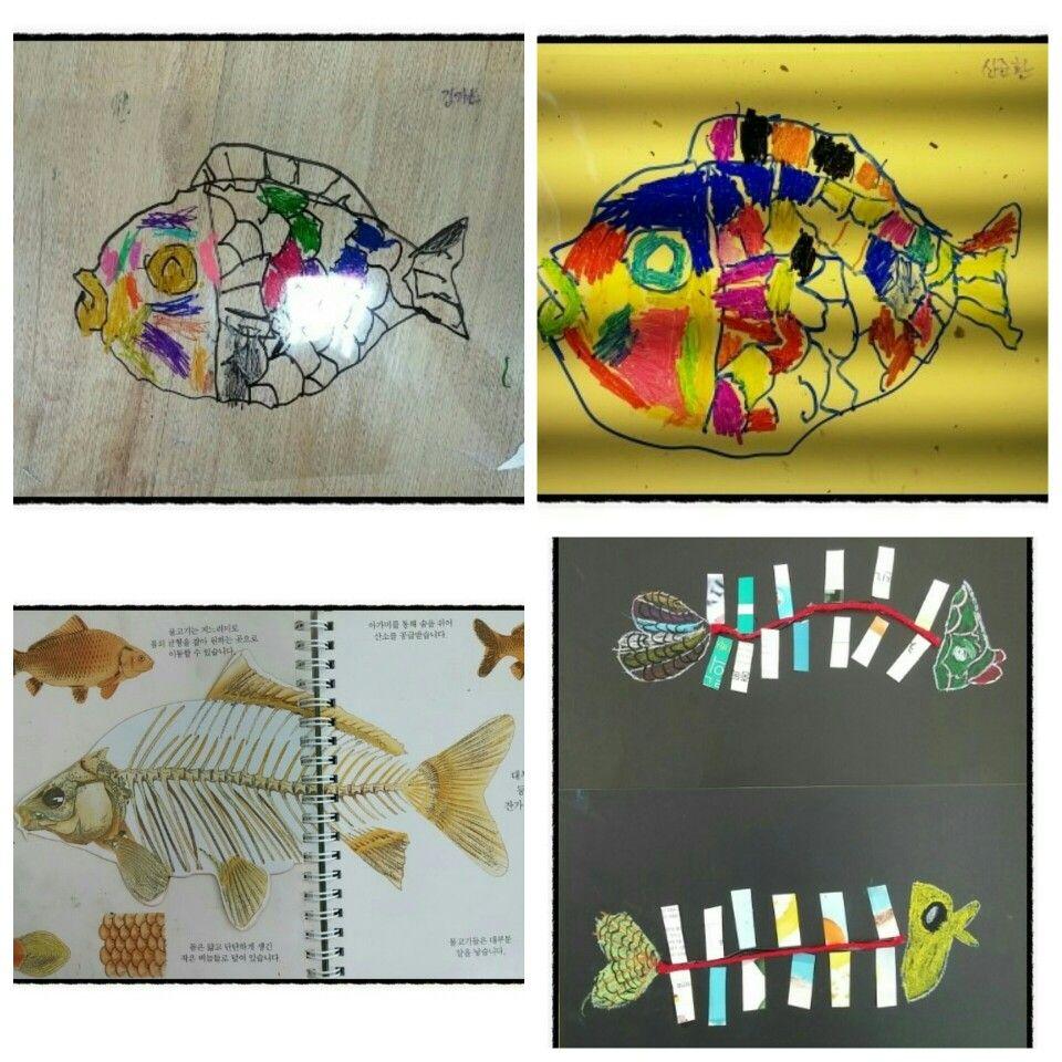 물고기 수업