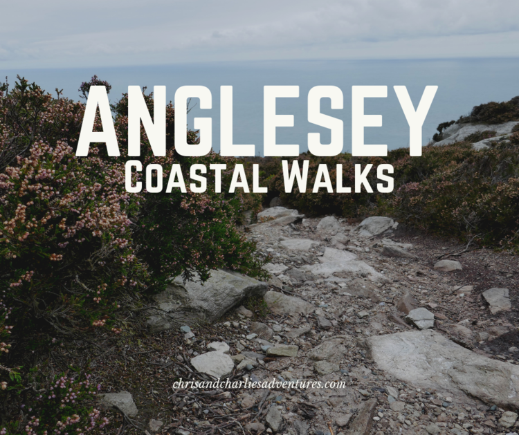 The best coastal walks on the isle of Anglesey, North Wales. #northwales