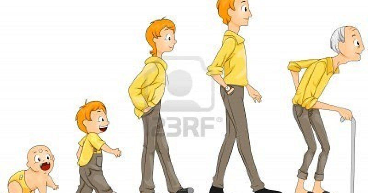 Periodos Y Etapas Del Ciclo De Vida Del Ser Humano El Desarrollo Humano Es Un Proceso Evolutivo Que Continua Durant Child Development Stages Life Cycles Life