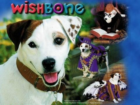 Tv Wishbone Complete Series 8 Dvd Set 50 Episodes Specials Very Rare 1995 97 Pbs Kids Kids Shows Wishbone