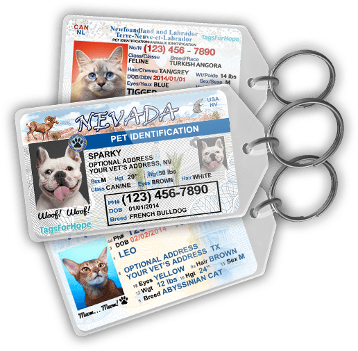Pet ID Tags resembling little driver's licenses! So ...
