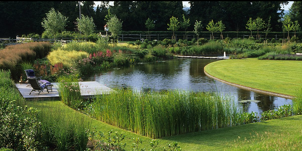 A garden in rural hampshire uk designed by english firm for Fish pond landscape ideas