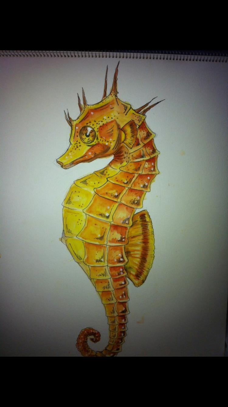 Seahorse - watercolour