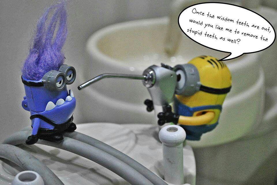 Dentist minion dental humor dental fun dental jokes