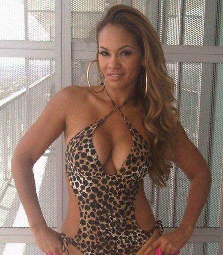 Evelyn Lozada Ass Grey Evelyn Lozada Naked Pictures Page  Naked Celebities