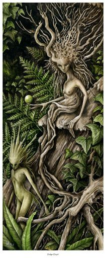 Hedge Dryad ltd ed print Marc Potts