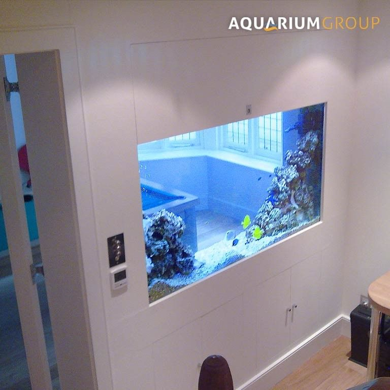 Pin by madeline on dream room home pinterest dream rooms fish tanks and room - Fish tank partition wall ...