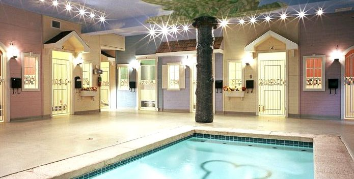 Animal Hospital With A Therapy Pool Surrounded By Luxury Boarding Suites Wow Dog Boarding Facility Dog Hotel Pet Resort