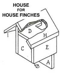 Finch Bird House Plans Dimensions of Finch House Plans