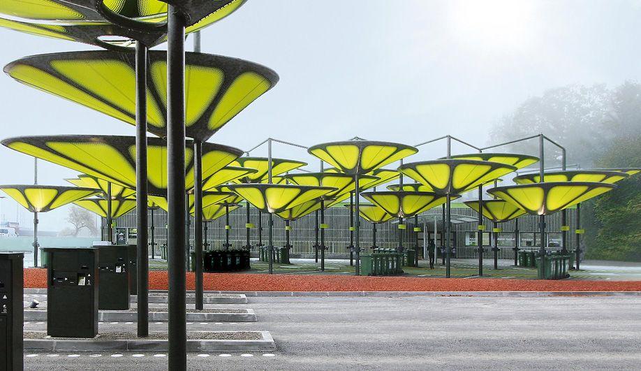 Umbrellas Shade structure
