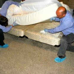 Hire Affordable Bed Bug Exterminators And Get Rid Of Bed Bugs. Our One  Spray Treatment