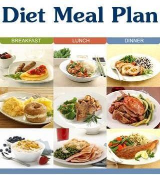 lose belly fat meals