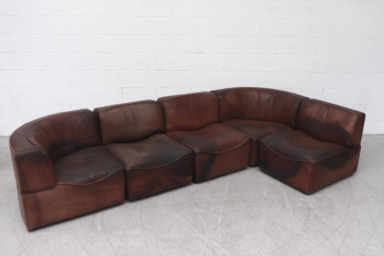 De Sede Ds15 Sectional Leather Sofa Sofa Leather Sofa Sofa Sale