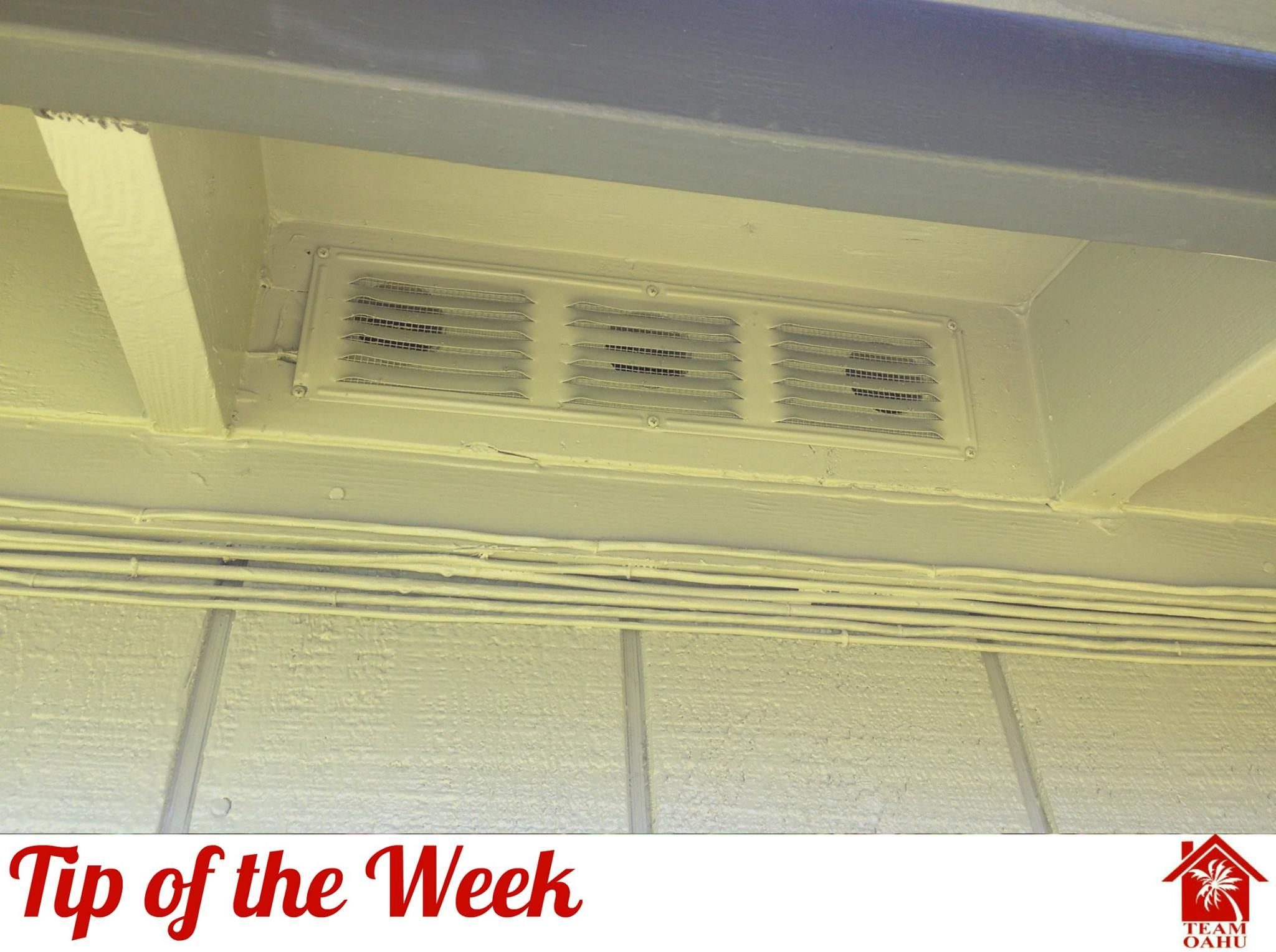 Make Sure To Check The Vents Around Your Home To Ensure Birds Are Not Entering Your Attic And Bringing In Nesting Material Home Appliances Home Tips