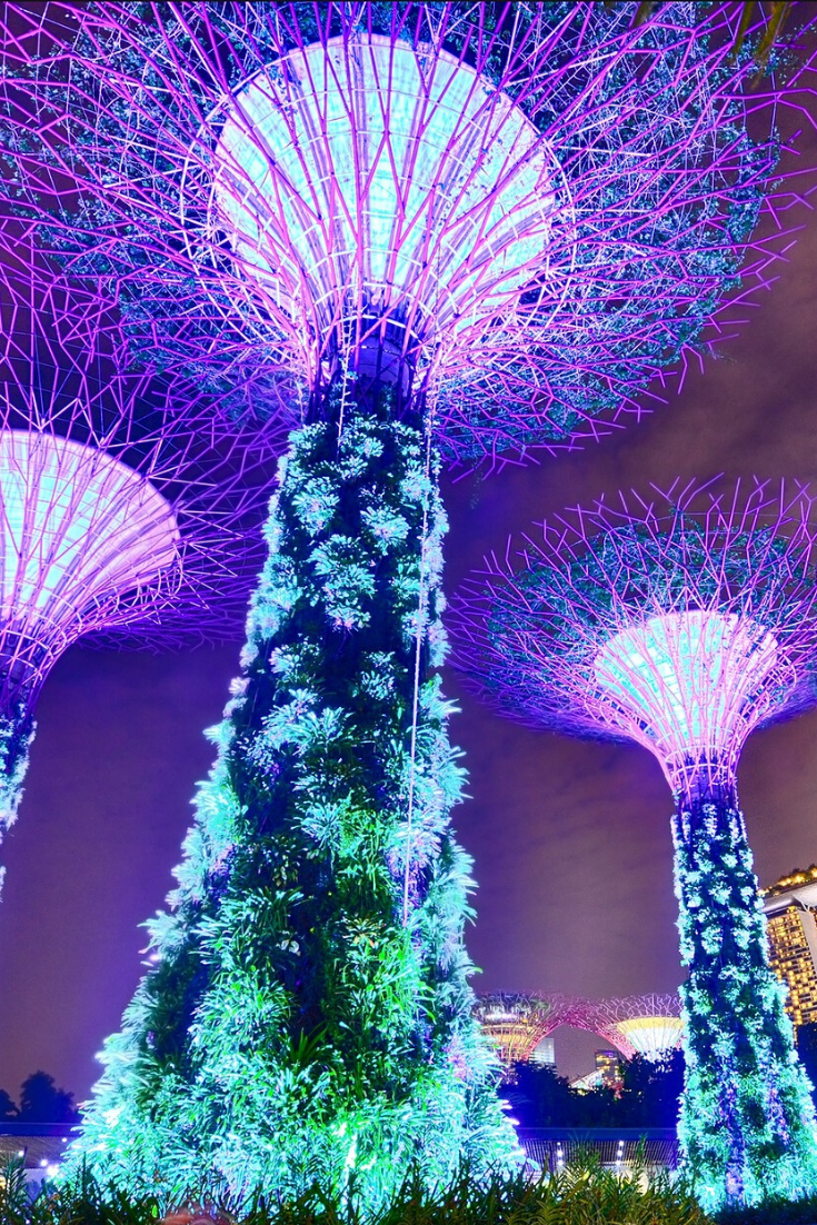 Gardens By The Bay Light Show Christmas