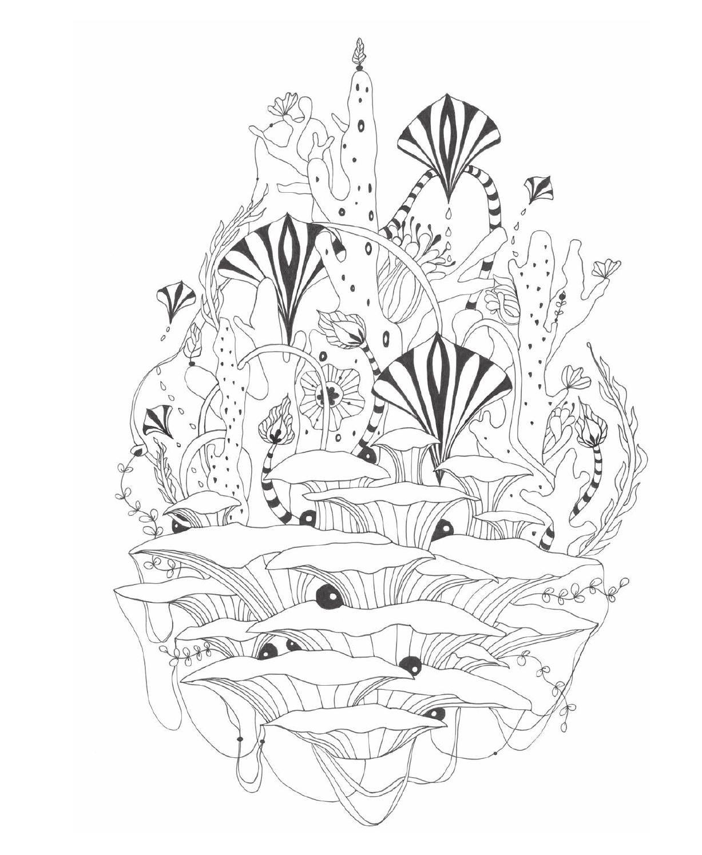 Botanical art coloring book - Botanical Wonderland Adult Coloringcoloring Booksfloral Paintingswonderland Coloringdrawings